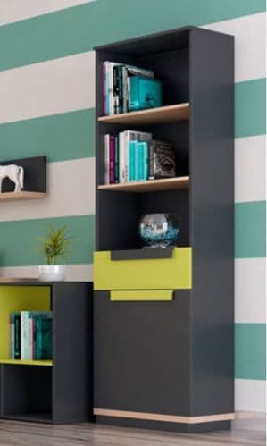 Fenwik Graphite And Green Tall Narrow Bookcase With 1 Door SZWO01